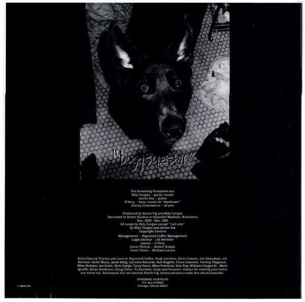 1 vinyl-kr-gish-12inchd2